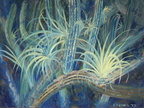 2013 St. John's Cactus with Air Plants   36 x 48