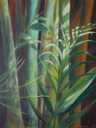 2013 Bamboo Study 30 by 24